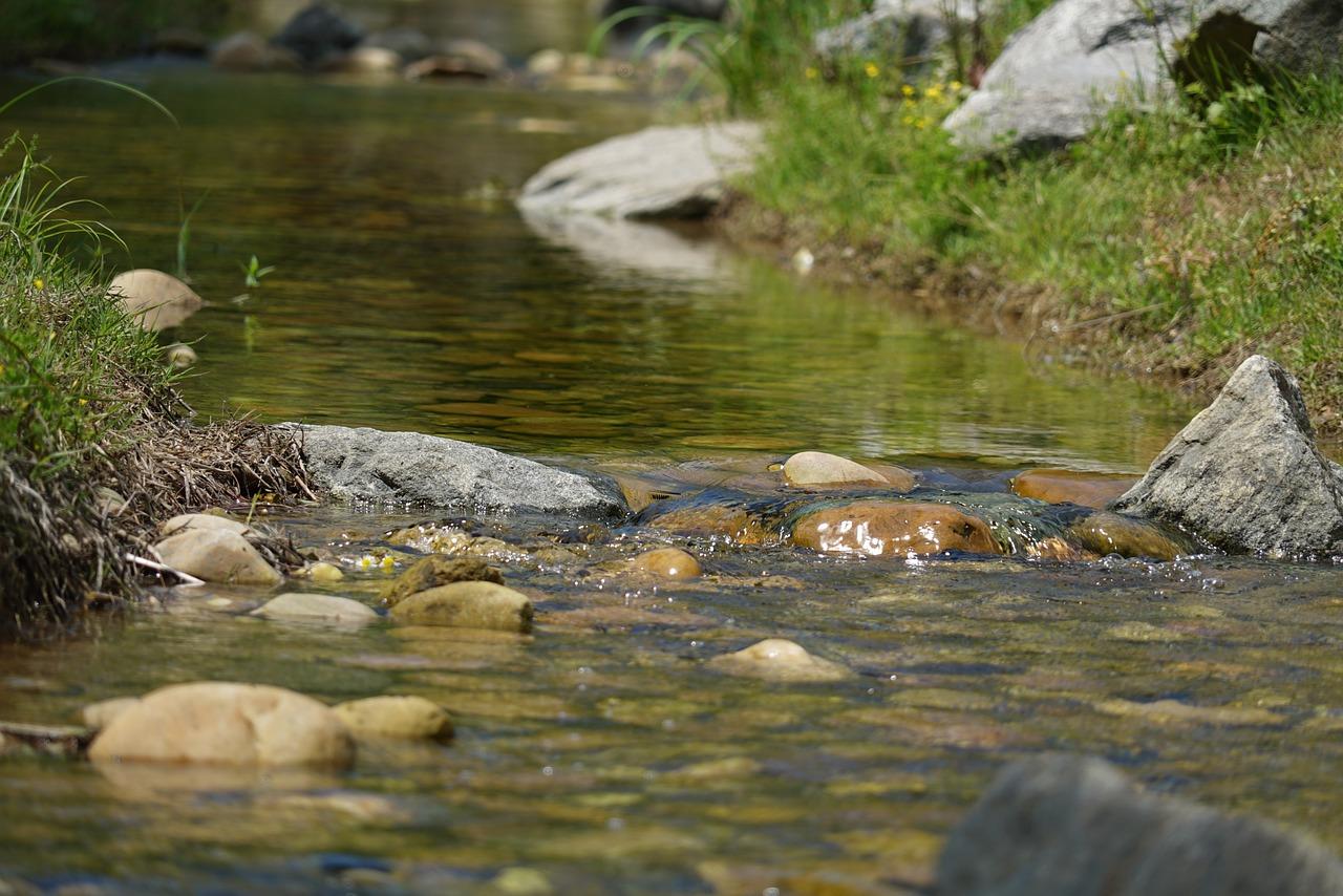 vera stadnikova potok